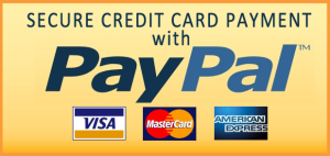 Secure-Credit-Card-Payment-With-PayPal
